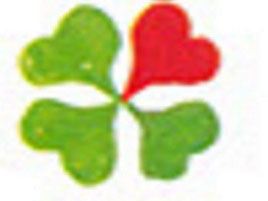 Buchung: County Travel 040/36 45 20