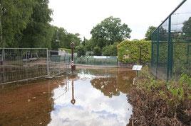 Tiergarten Bernburg nach der Flut