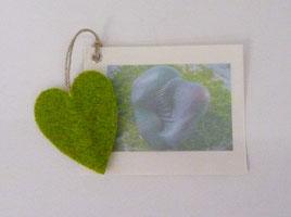 Elements of Heart [Green grass]
