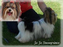 Jo Jo Snowprince