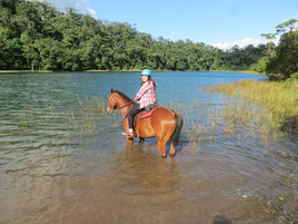Arenal Volcano Horseback Riding Tour