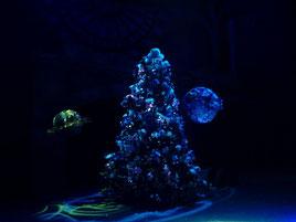 新国立劇場ミュージカルリズミックタウン舞台装花「地球と土星」