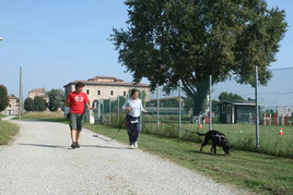 Passion for Dogs - educazione cinofila