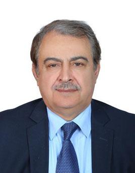 Prof. Amer Hosin