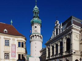 Wellbeing in Sopron, Wellness, shopping, kulinarische Genüsse & Gesundheitstourismus
