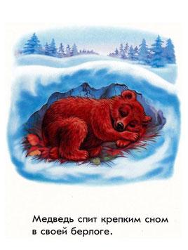 Медведь спит в своей берлоге