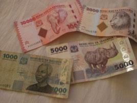 Geld aus Tansania