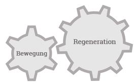 Im Personal Training geht es um Bewegung und Regeneration.