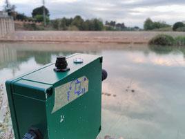 Gravador d'ultrasons SM2BAT de Wildlife Acoustics