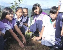 友だちと協力して木を植えた後も管理を頑 張っています