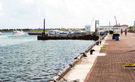 石垣市が離島ターミナル周辺でマーケット設置を計画している(写真は25日午後)