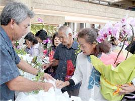 シッサスやクビナガバレリアなどの花・苗木が無料で配布された=4日午後、市民会館