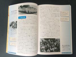 実質、17年度に刊行されない事となった副読本『八重山の歴史と文化・自然』