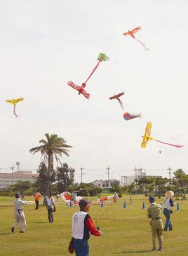 空に舞う数々の鳥凧=28日午前、マエサトゴルフ場