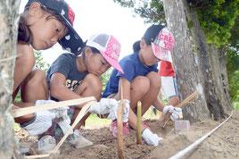 「土壌保全の日」のイベントで月桃の植栽が行われた=20日、川平