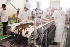 水産加工施設で機械化されたモズク洗浄梱包ライン(15日午後)