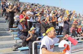 八重山や全国各地から、関係者が応援に集まった=24日午後、鹿児島県立鴨池野球場