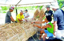 本番用の草舟を制作するメンバーら。島に自生するトウツルモドキを使って束ねる。