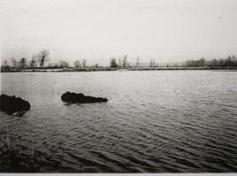 Les marais inondés