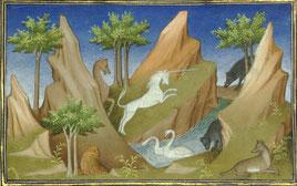 Une licorne dans le Livre des Merveilles de Marco Polo.