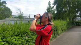 Asiatischer Laubholzbockkäfer Anoplpohora Spürhunde Schweiz