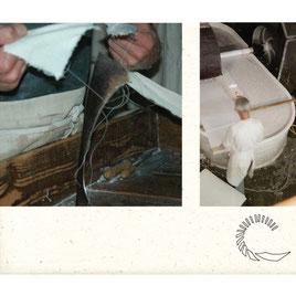 Les matières premières pour la fabrication du papier. Moulin de Vallis Clausa