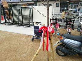 卒園記念樹(サクラ:ソメイヨシノ)植栽@奈良県大和高田市