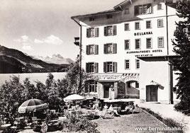 713-006 Photo & Verlag Albert Steiner, St. Moritz, Karte ungelaufen