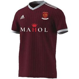 Das Trikot vom Dial Square FC gibt's für £40 im Online-Shop. Bild: MAHOL
