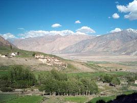 Hochtal in Zanskar
