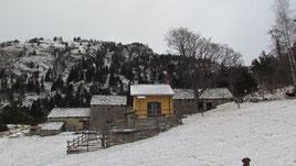 Alpe Gorta m. 1330