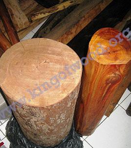 血龍木王 帝王木 樹王 神木 Raja Kayu Rajakayu Kayu Raja Kayuraja King of wood