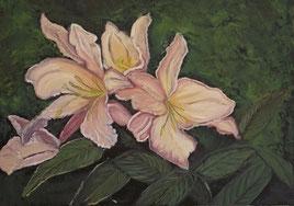 primavera in fiore, olio su tela  40x50 cm, 2012