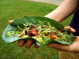 Benefici di un'alimentazione vegetariana