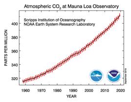 Die CO2 Konzentration der Atmosphäre steigt kontinuierlich an. NOAA