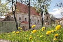 Šv. Mykolo bažnyčia / St. Michael's church ( photo Gintaras Burba)