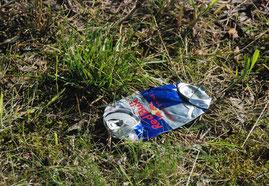 Abfall, Wegwerfgesellschaft