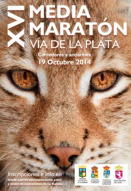 """XVI MEDIA MARATON """"VÍA DE LA PLATA"""" - La Bañeza, 19-10-2014"""