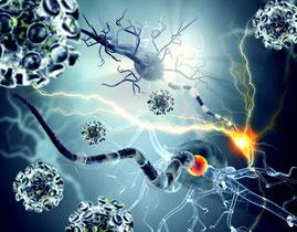 Allergien, Heuschnupfen und Darm-Entzündungen - naturheilkundliche Therapie