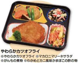 宅配弁当 普通食 かつおフライ
