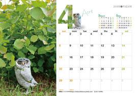 カレンダー中面