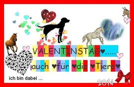 Valentinstag 2014 Aktion für Celals Pferde und Sevgi, das Eselchen!!!