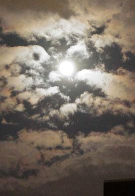 昨夜、ちょうどPM8:30ころのお月様だよ