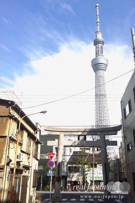 牛嶋神社入り口鳥居と東京スカイツリー