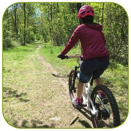 MTB Bike Fahrtechnik Kurs Beginner Einsteiger Anfänger
