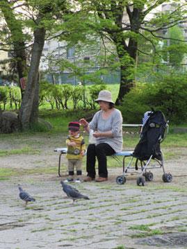 鳩ぽっぽへ餌やりの親子連れ。のどかな昼下がり…*