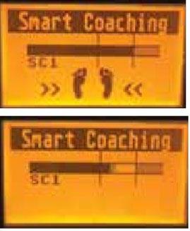 Vibrationsplatten Galileo, Smart Coaching, gebraucht kaufen, Test: www.kaiserpower.com