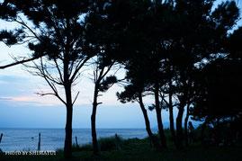 屋久島ナイトツアー,星空観察,ウミガメ観察,夕焼け
