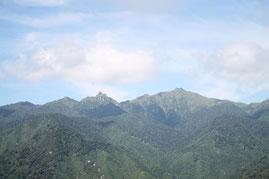 屋久島・太鼓岩トレッキングで見える絶景(白谷雲水峡ガイドツアー)