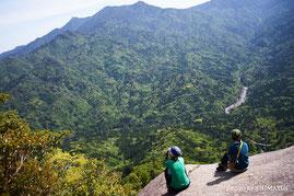 太鼓岩からの春の新緑は、屋久島の風物詩